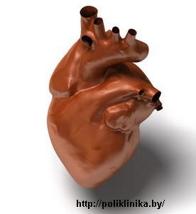 В Беларуси пересажено сердце