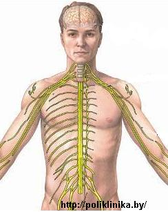 Лечение неврита