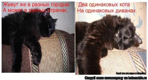 Аватар пользователя Екатерина